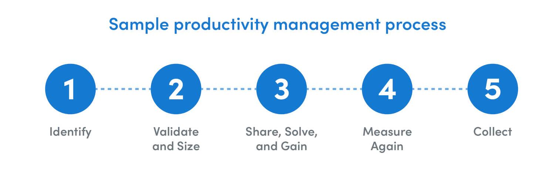 Sample Productivity management process